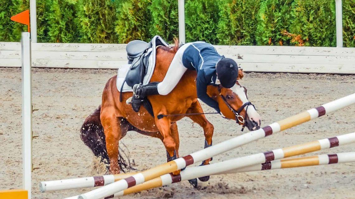 Le cheval tombe et échoue (DOIT REGARDER !!)