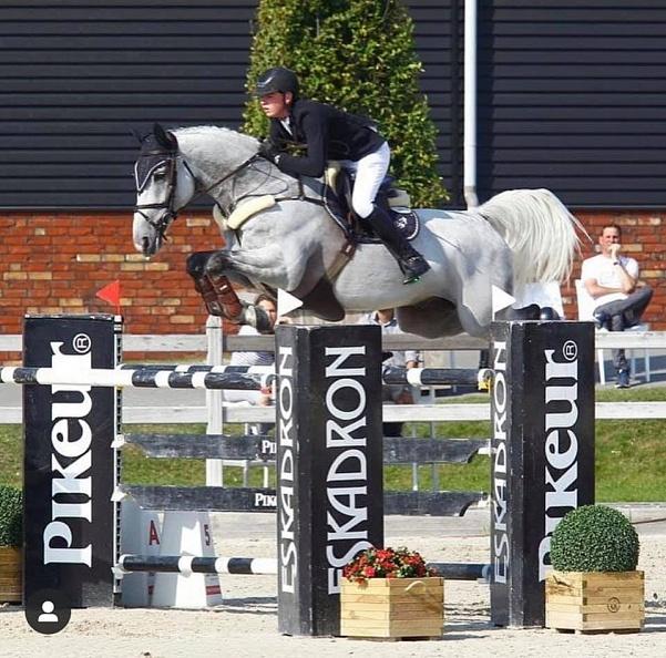 Le nouveau cheval de Bertram Allen au Winter Equestrian Festival