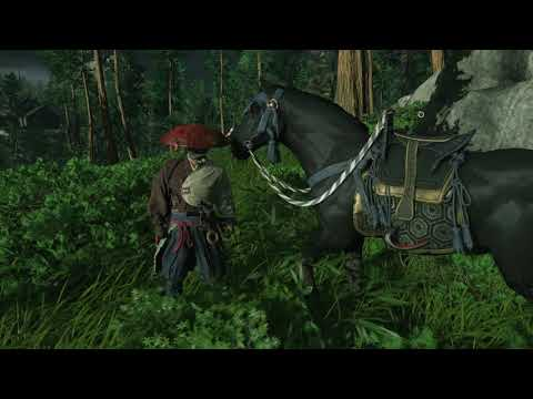 MajesticEchidna – Horse fail