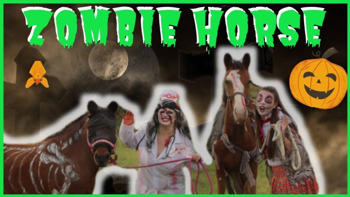 Mon POULAIN se transforme en ZOMBIE: Zombieland 🧟♀️🎃 #HALLOWEEN #ZOMBIEHORSE #ZOMBIE #POULAIN