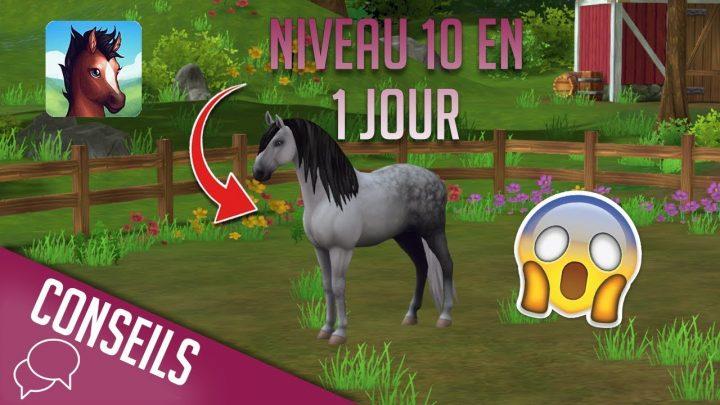 Obtenir un cheval en UN JOUR sur l'appli Star Stable Horses