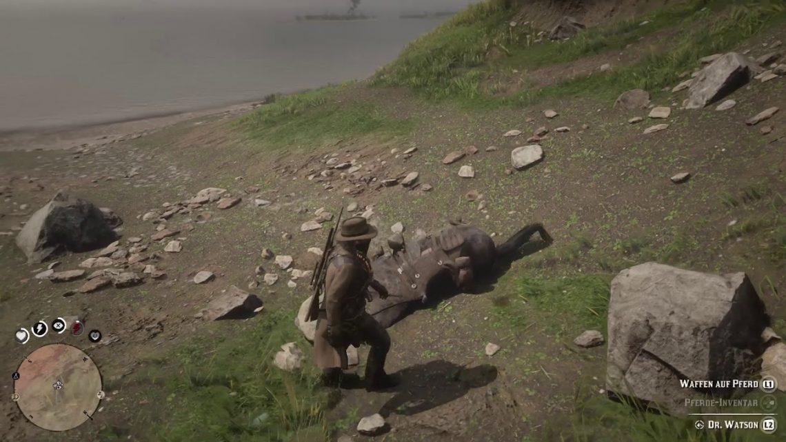 Rdr2 Horse x Stone fail
