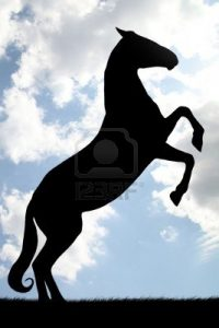 cheval mandala à imprimer