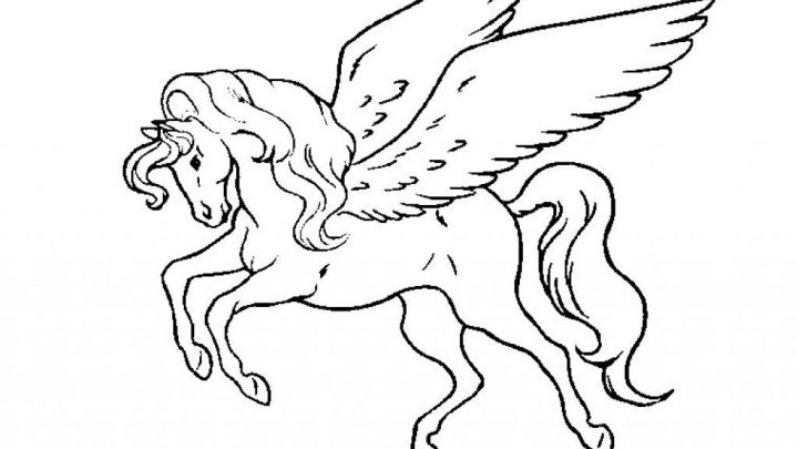 Coloriage Cheval Sauvage