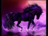 coloriage de cheval qui cabre