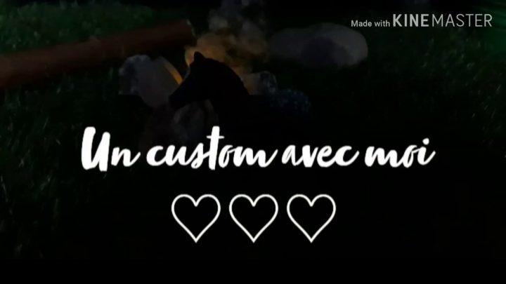 ♡ Je custom un poulain playmobil avec vous ♡
