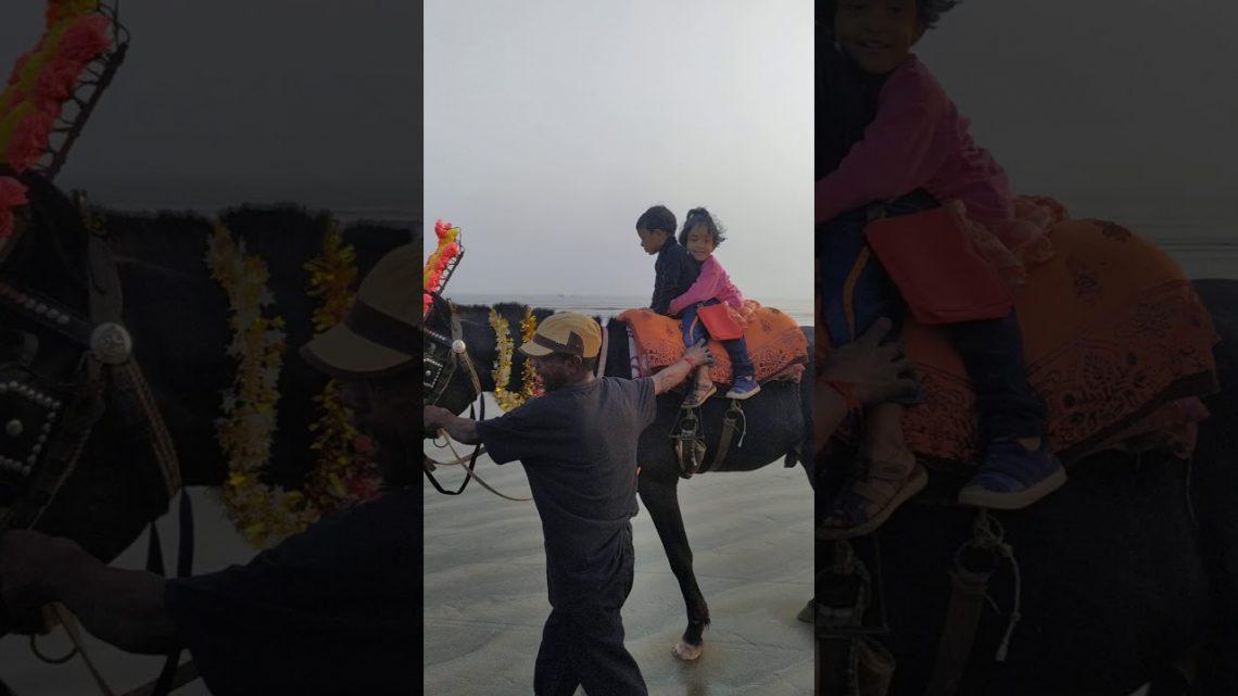 Bébé à cheval avec son frère #horse, #sunset, #riding, #baby, #barbiedoll