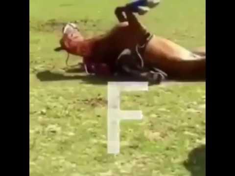 Cheval femme échouent BIG F