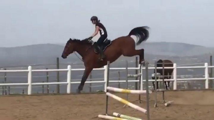 Chutes et échecs de chevaux (12)