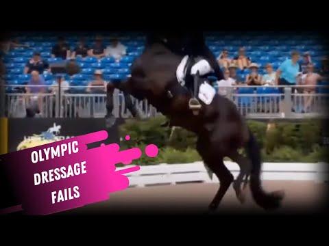 Dressage Disaster: Compilation d'échecs olympiques