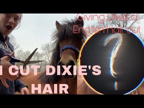 I GAVE MY HORSE A ENGLISH HAIR CUT// fail or 😍?!?