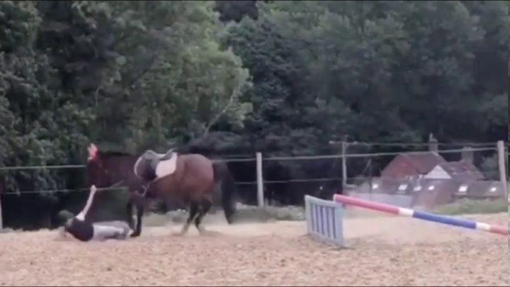 Le cheval échoue et tombe 🐴
