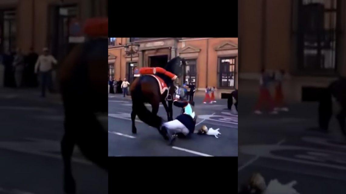 Military March Fail 07😂: cheval méchant