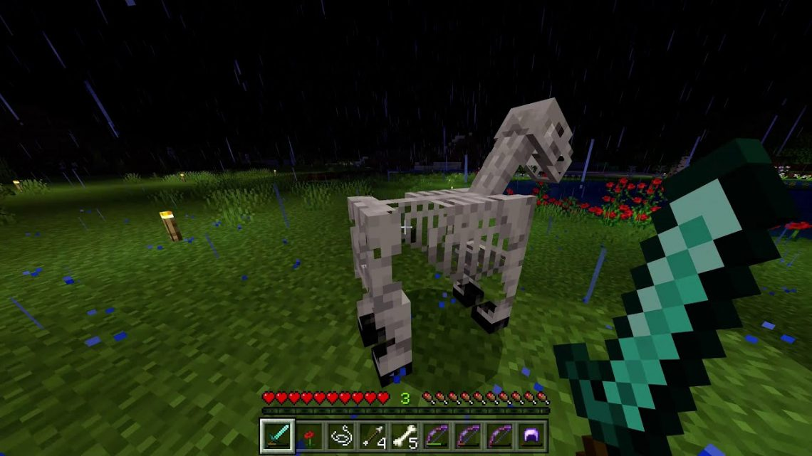 Minecraft: Skelton Horse trap fail