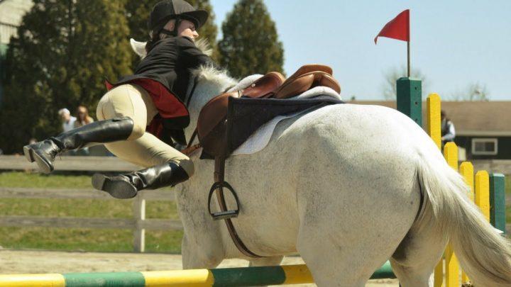 Oops!!  L'équitation échoue / tombe pt.1