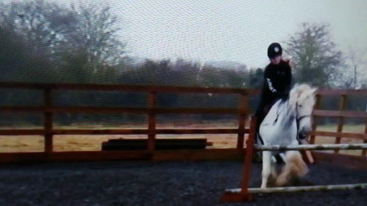 Pony nuts horse fails