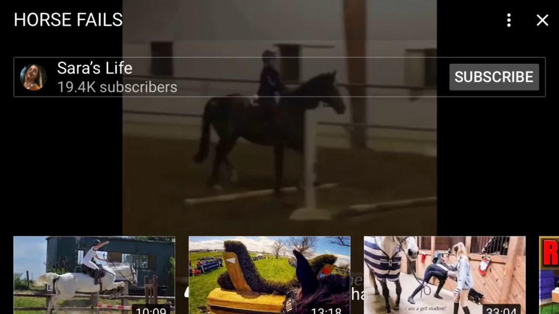 Réagir au cheval échoue