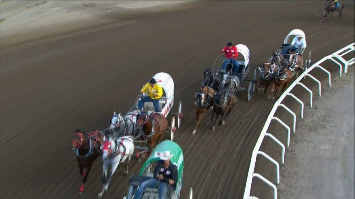 1 cheval mort dans la course de chariots du Stampede de Calgary
