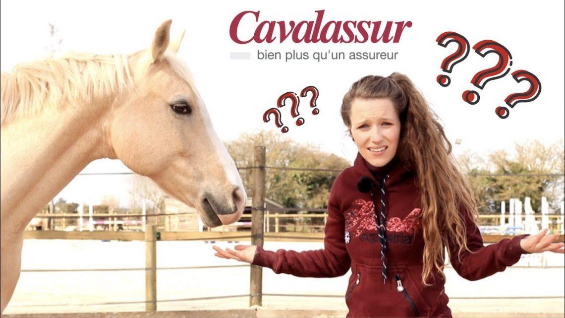 Assureur son cheval?  QUI?  QUE?  QUOI?  🐴🤯Je Georgette ou Taxi?