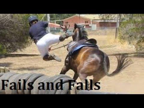 Cheval tombe et échoue compilation