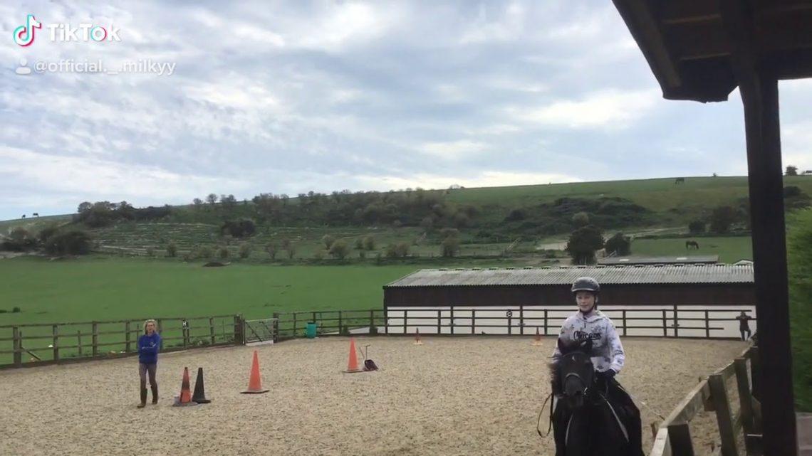 Coco : new horse 💕 : fail 😂
