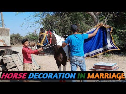 Décoration de cheval en mariage – Nanrwada, Sirohi, Rajsthan – Nit Khair Manga par Maithili Thakur