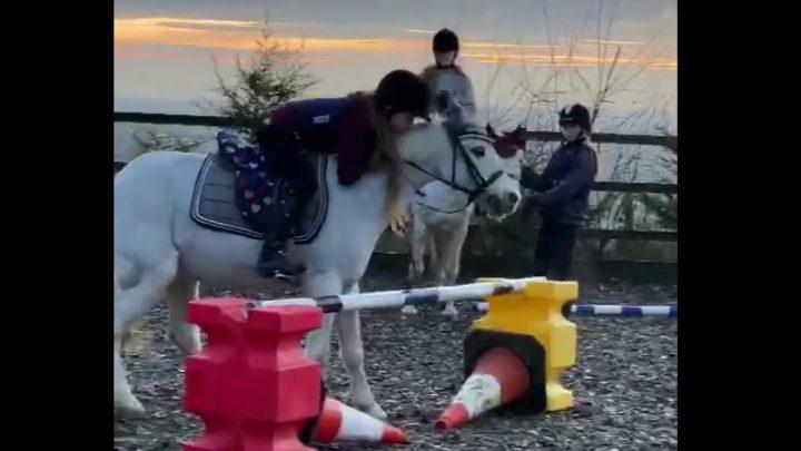 ÉCHECS / CHUTES DU CHEVAL!  Château équin