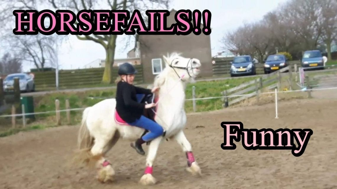 ÉCHECS ET CHUTES Cheval    Mon cheval échoue!