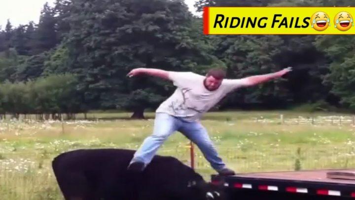 Échec de l'équitation 🤣 / Échec de l'équitation / Échec drôle / Échec de l'armée