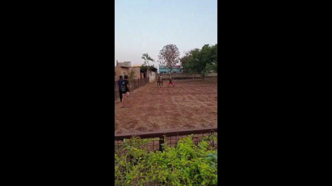 Échec de l'équitation # automne # maujkardi # heavyydriver
