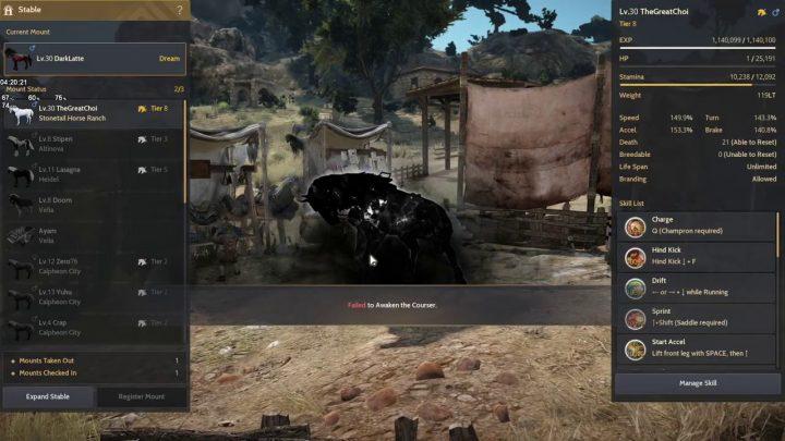 Fail again, Dream Horse Attempt – Black Desert