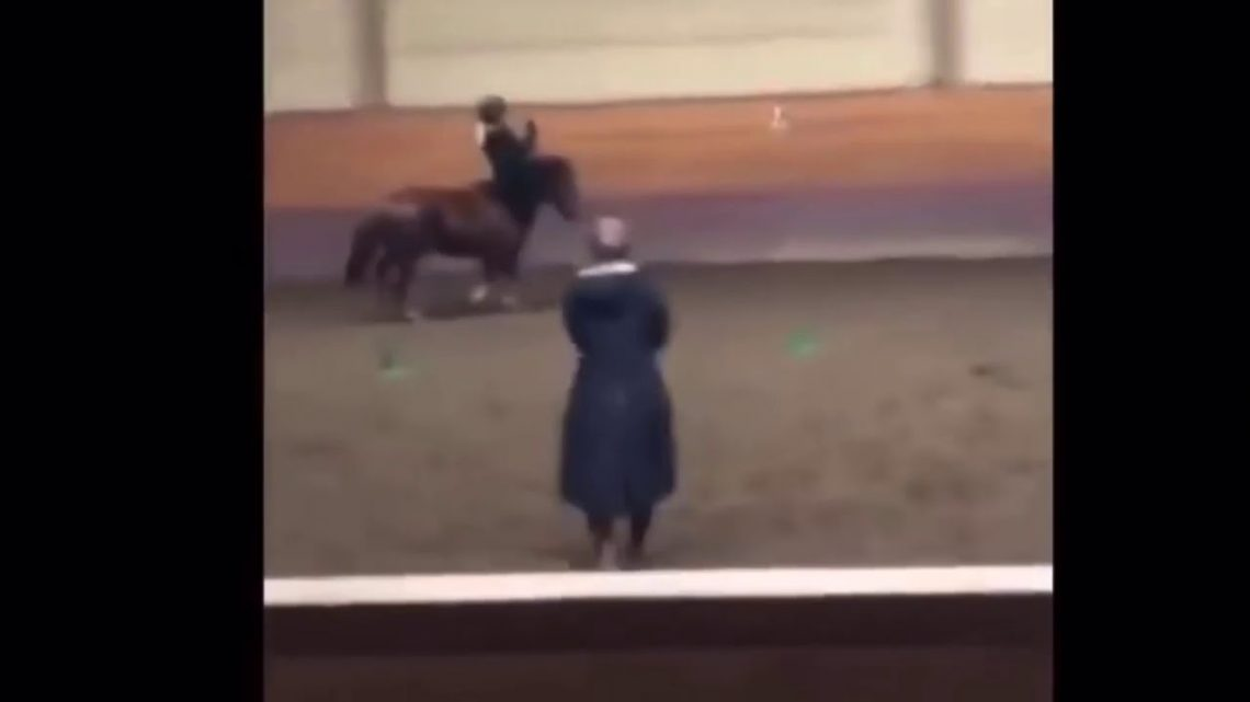 Horse falls and fails(NEED TO WATCH)