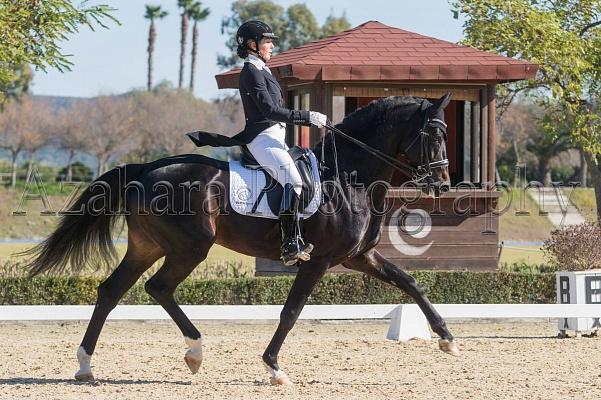 Irina Zakhrabekova a vendu son cheval DSP Quadroneur