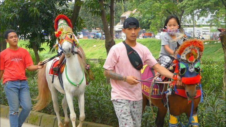 KUDA DELMAN TV 🔴 Naik Kuda Delman, Kuda Tunggang Cipinang Indah – Cheval – Dokar – Andong, Naik