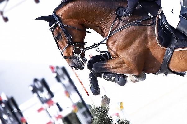 La France veut renvoyer des chevaux d'Espagne