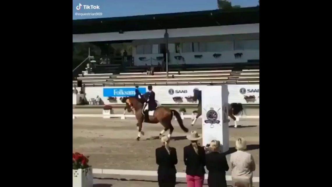 Le cheval échoue et tombe!