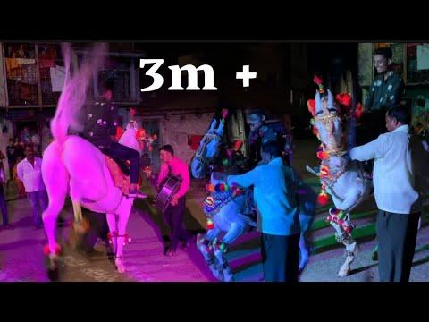 Vidéo de danse du cheval |  danse du cheval au mariage |  fanfare de ganesh