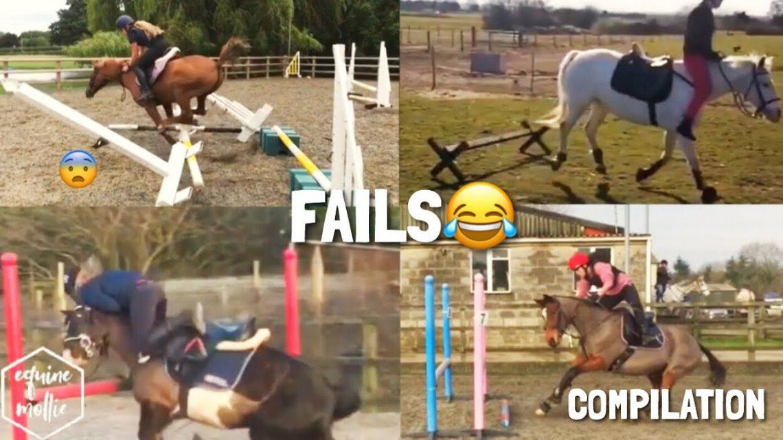 cheval tombe et échoue compilation |  équinemollie