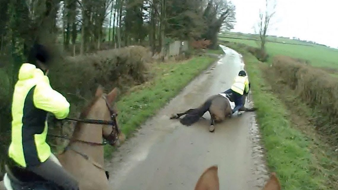 Spooked Horse tombe de l'autre côté de la route
